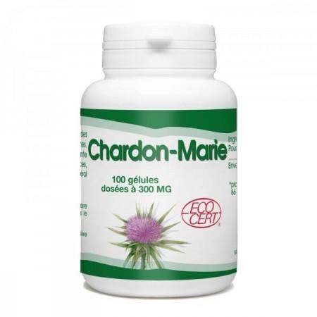 Chardon-marie 100 gel