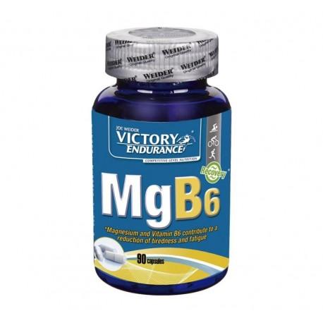 MgB6 de victory endurance