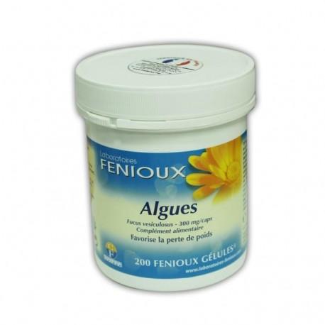 ALGUES (FUCUS VESICULOSUS)  FENIOUX   200 GÉLULES