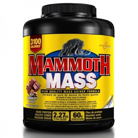 Mammoth Mass Gainer (3100 calories par jour)
