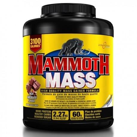 Mammoth Mass Gainer (3100 calories par jour)