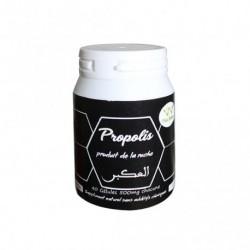 Propolis 320 mg 40 gélules