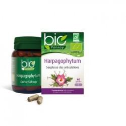 Harpagophytum Bio - 60 gelules