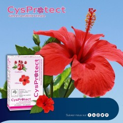 Cysprotect (Confort urinaire) 30 gélules