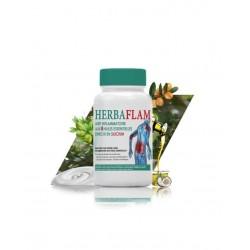 Herbaflam gel Anti inflammatoire 100 gr