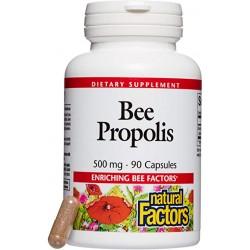 Propolis 500mg 90gélules