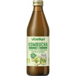 Citron Gingembre - Kombucha Bio